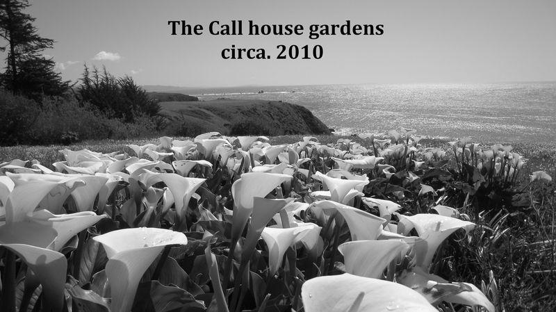 Call Farm gardens